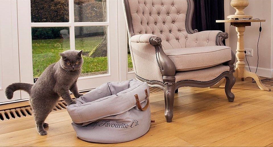 designed by lotte katzenbett my favourite cat grau 40cm. Black Bedroom Furniture Sets. Home Design Ideas